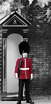 Red Guard in London