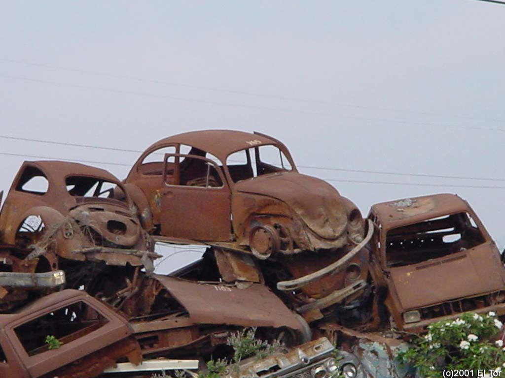 Rusty cars by san-tor