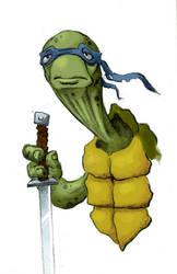 Turtle by Nik-Noumenak