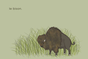le bison. by puka23