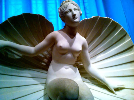 The Birth of Venus by Flamesofmercy