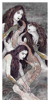 .: the sirens lure :.