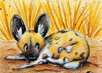 Wildhund by karpfinchen