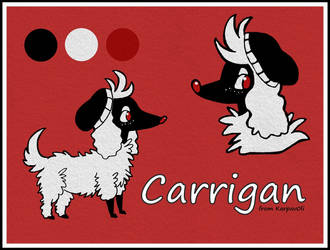 Pokesona: Carrigan by karpfinchen