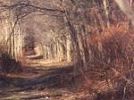 Abandoned Pathway