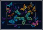Exotic Butterflies