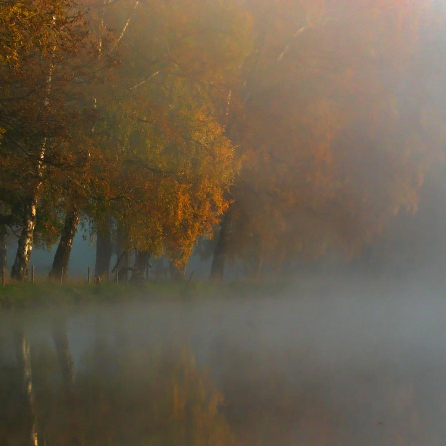 Autumn Haze I by Photopathica