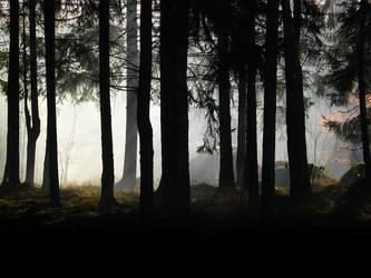 Smokescreen I by Photopathica
