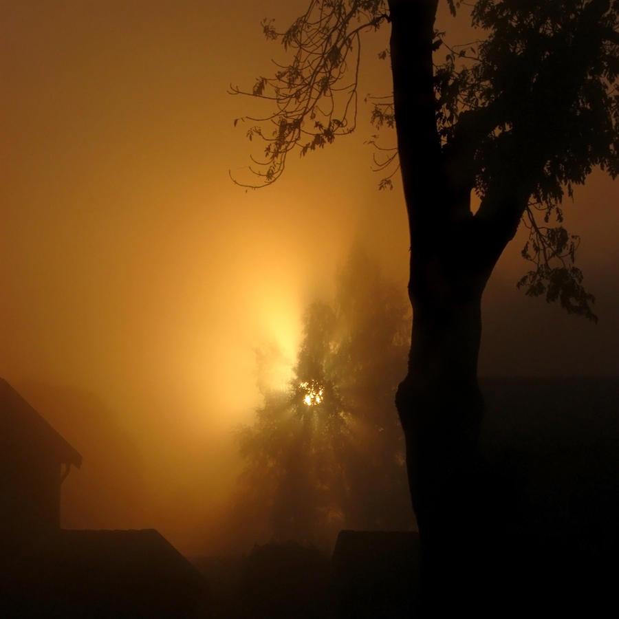 Obscured Light I