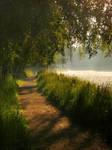 Morningwalk I