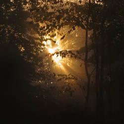 Obscured Light III