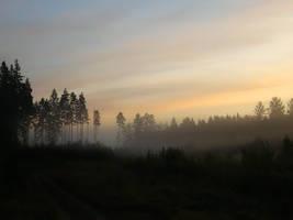Morning Haze I