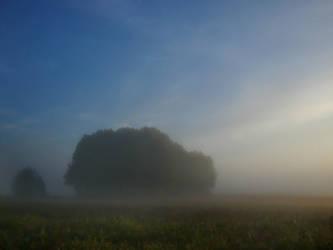 Morning Haze II by Photopathica