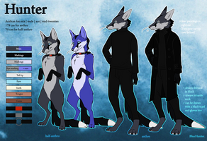 Reference - Hunter anthro by BlueHunter