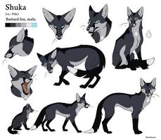 Reference Sheet - Shuka by BlueHunter