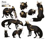 Reference Sheet - Fern