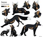 Character Sheet - Soyuz