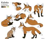 Character Sheet - Kalinka