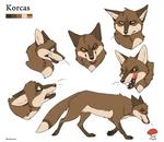 Character Sheet - Korcas