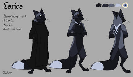 Character Sheet - Larios by BlueHunter
