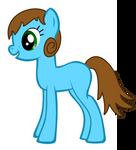 Pony request