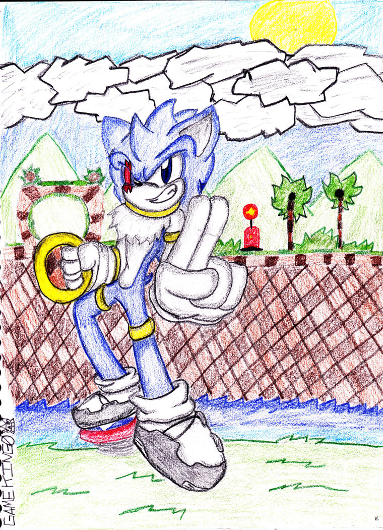 zero in green hill zone by Gamking0
