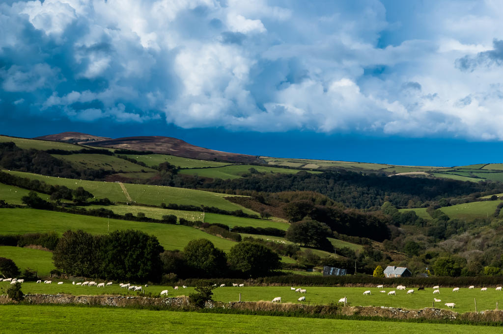 Exmoor Landscape V by lordradi