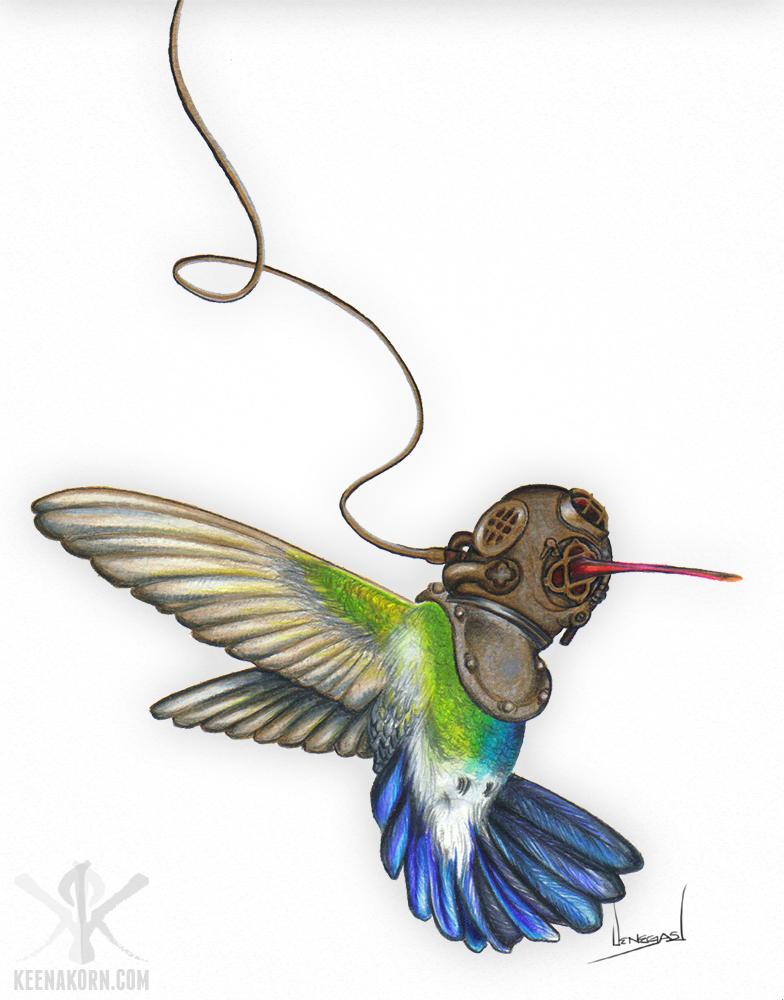 Underwater hummingbird by keenakorn