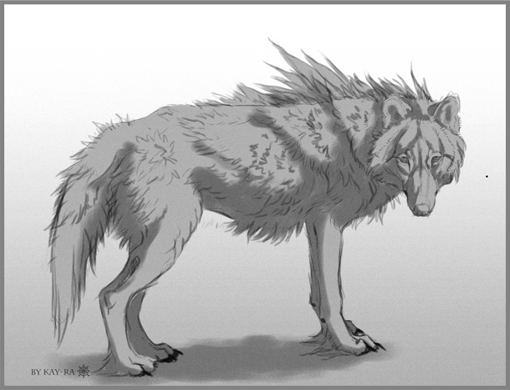 Wolf by Kay-Ra