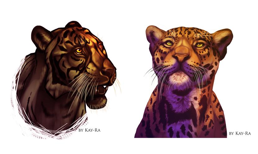 Feline study by Kay-Ra