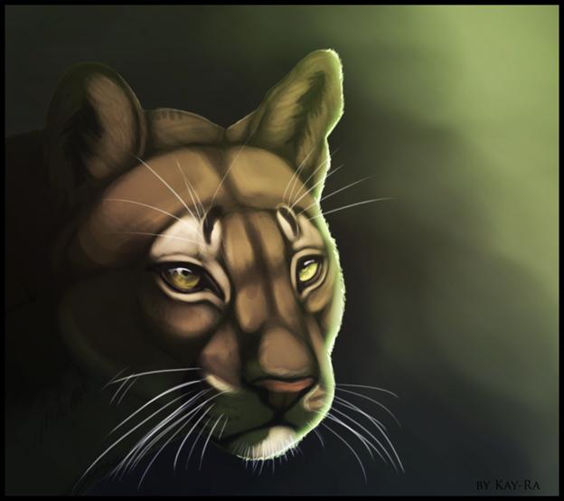 Hunter by Kay-Ra