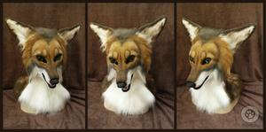 Stevo coyote head