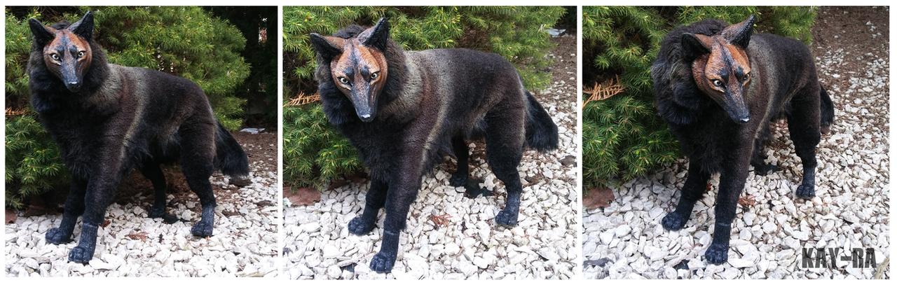 Dark brown wolf artdoll by Kay-Ra