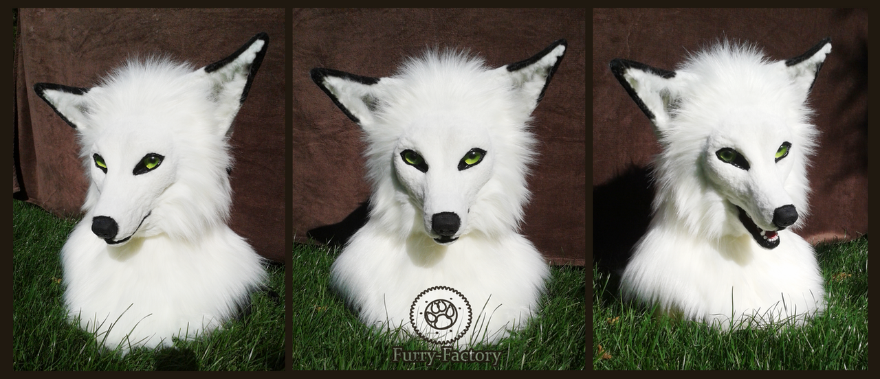 White fox head by Kay-Ra