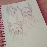 Lynx sketches