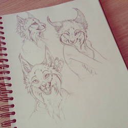Lynx sketches