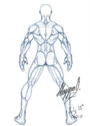 Male Anatomy Template: Back