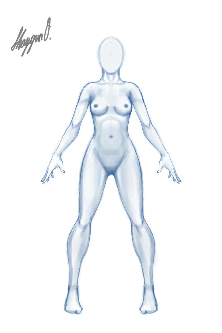 Female Anatomy Template: Front [UPDATED] by Shintenzu on DeviantArt