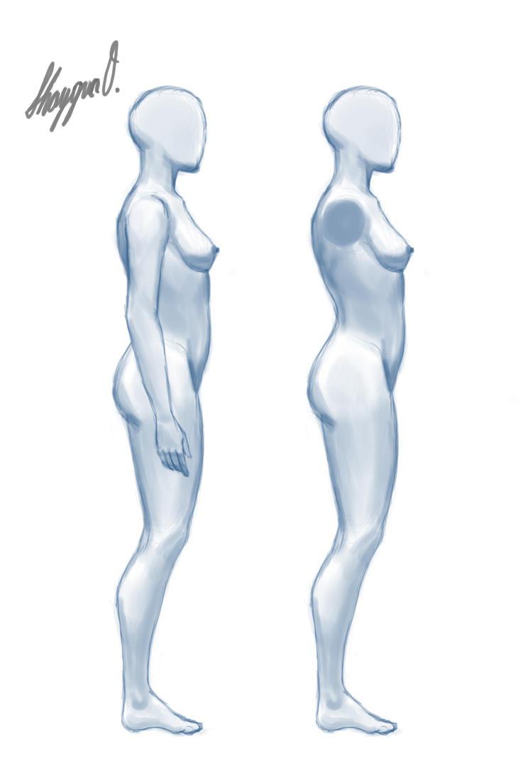 Female Anatomy Template Side By Shintenzu On Deviantart