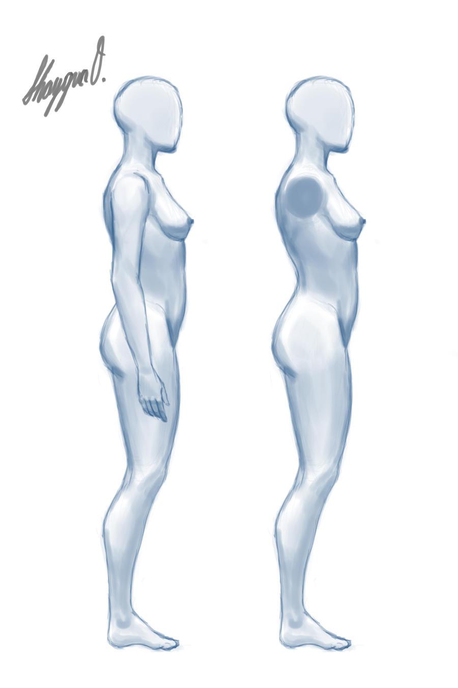 Female Anatomy Template Front Updated By Shintenzu On Deviantart
