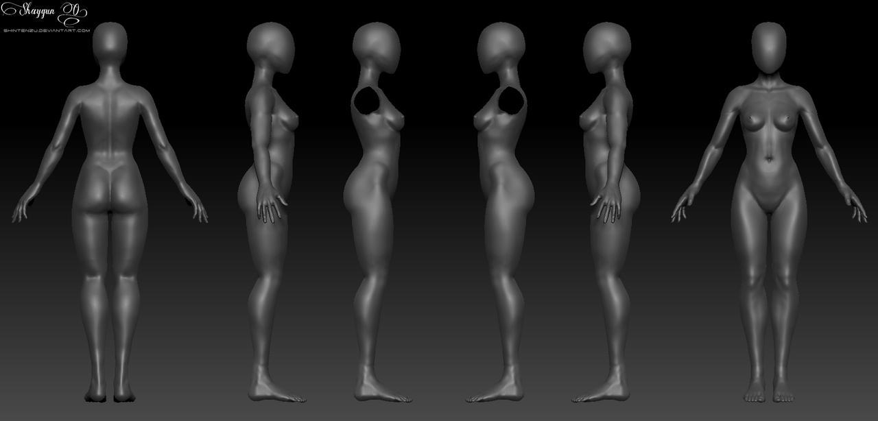 Female 3D Anatomy Template by Shintenzu