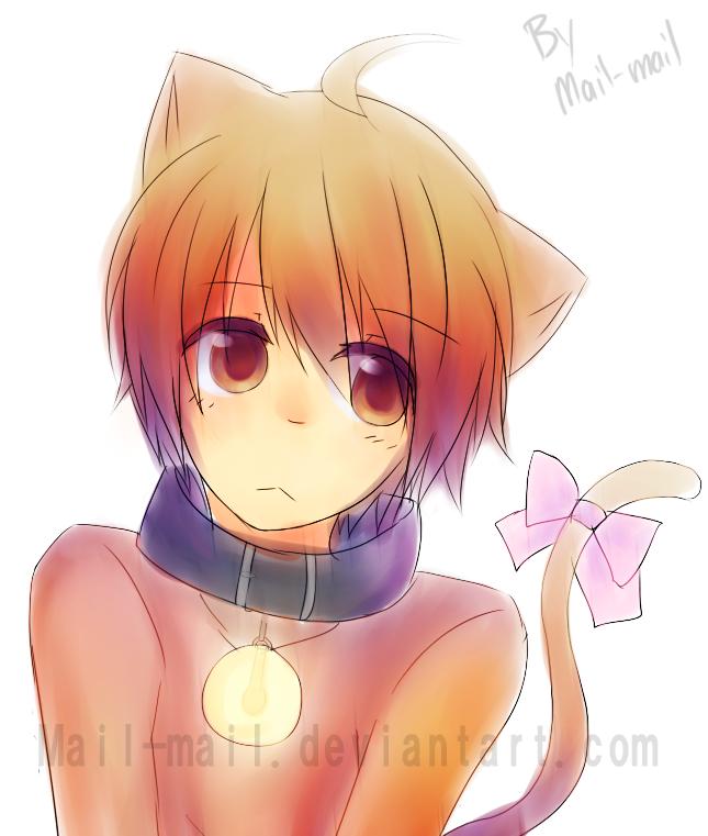 Cute Anime Cat Boy Best Value