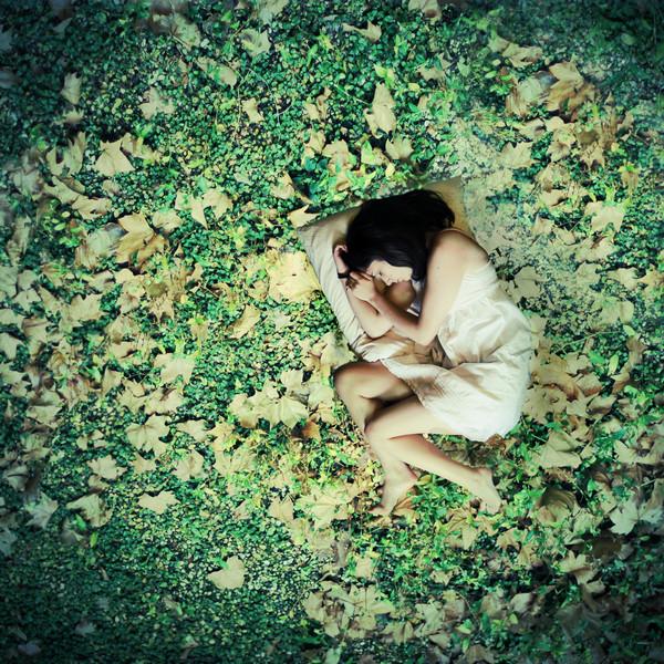 Where dreamers go by Julie-de-Waroquier