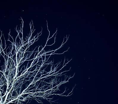 Dead as Night by hurutotheguru