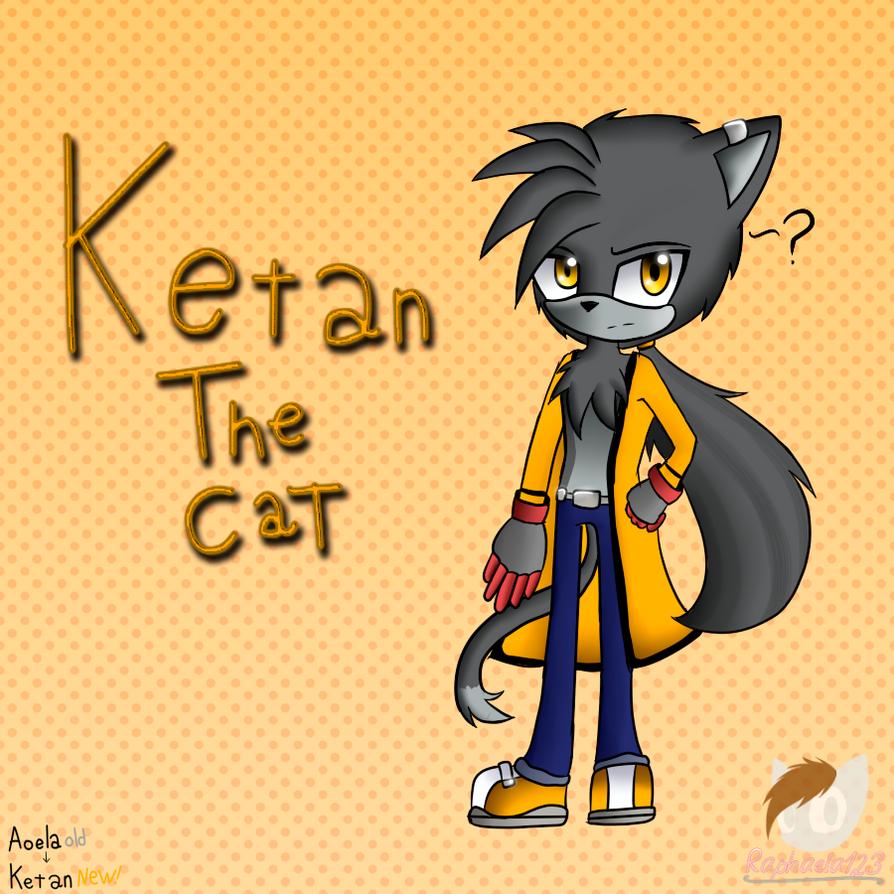 ketan the cat New! by Raphaela123