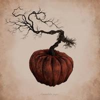 Botanical Pumpkin by AnnSofieVejs
