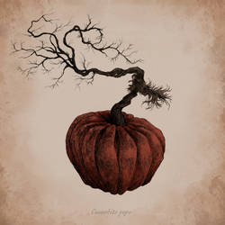 Botanical Pumpkin by AnnSofieVejs