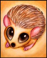 Hedgehog by Oha