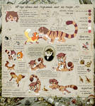 NP-tiger reference sheet