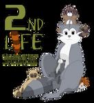 2nd LIFE - VIDA A TRAVES DEL ESPEJO - 2019